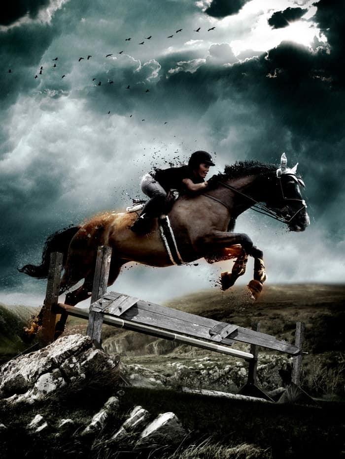 Ha szeretnéd a lovaglás mozgásformáit szakszerűen bemutatni, elemezni, eredményesen oktatni, akkor a Sportedző (lovaglás) OKJ-s tanfolyam Neked való!