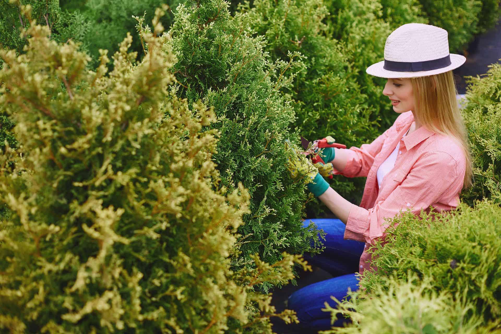 Kertész feladatai