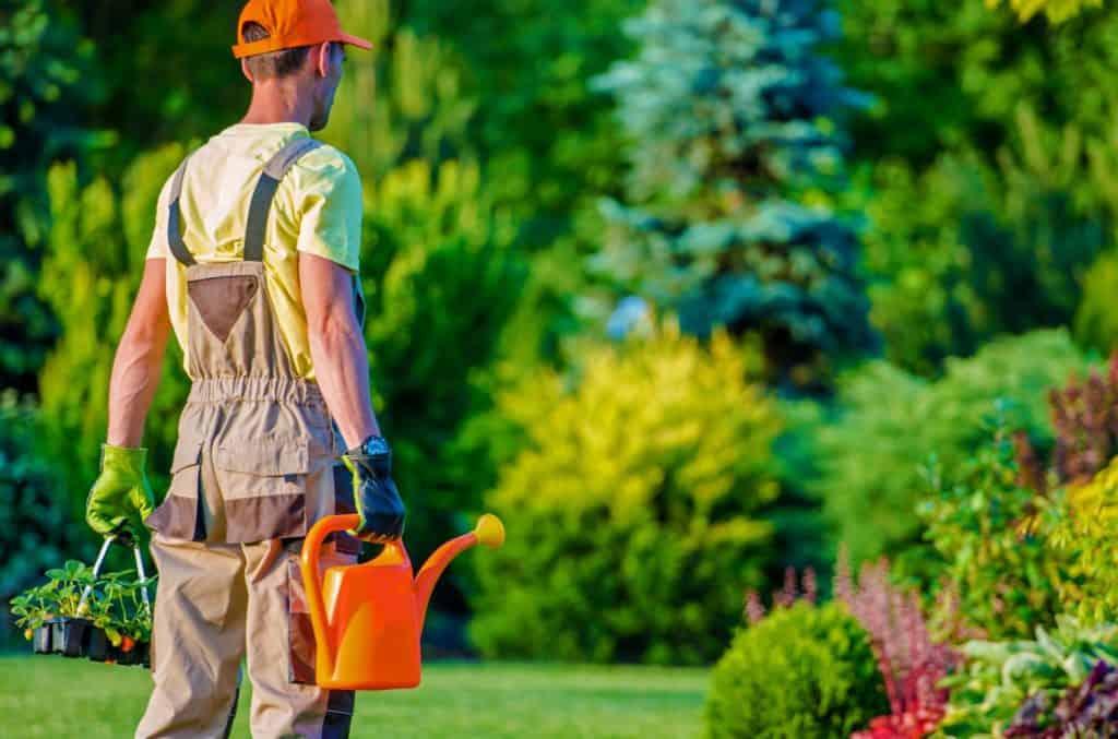 Kertészeti vállalkozás tippek