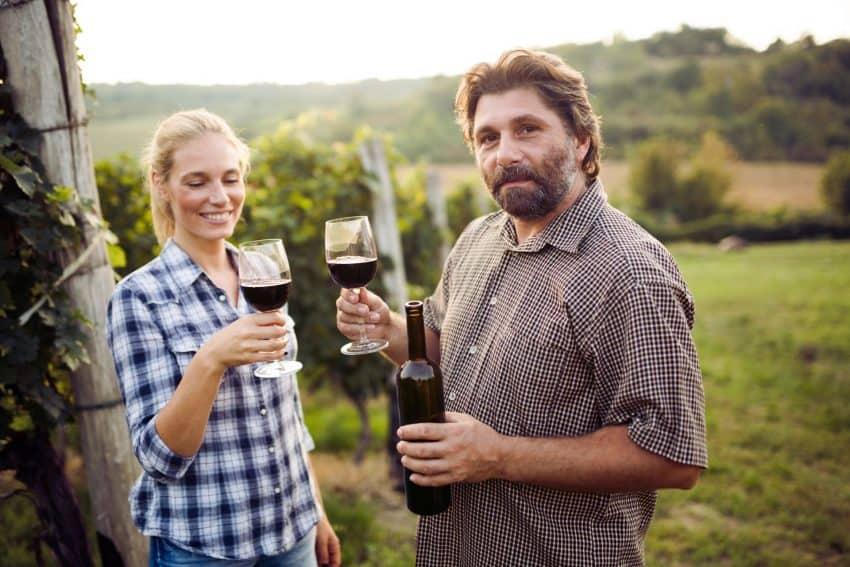 borászat nyitása