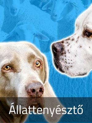 állattenyésztő szakmacsoport