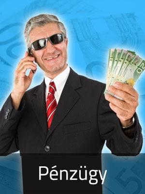 pénzügyi szakmacsoport