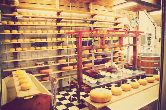 Ha elvégzed a Sajtkészítő tanfolyamot, jobb sajtot készíthetsz, mint a hollandok és a franciák!