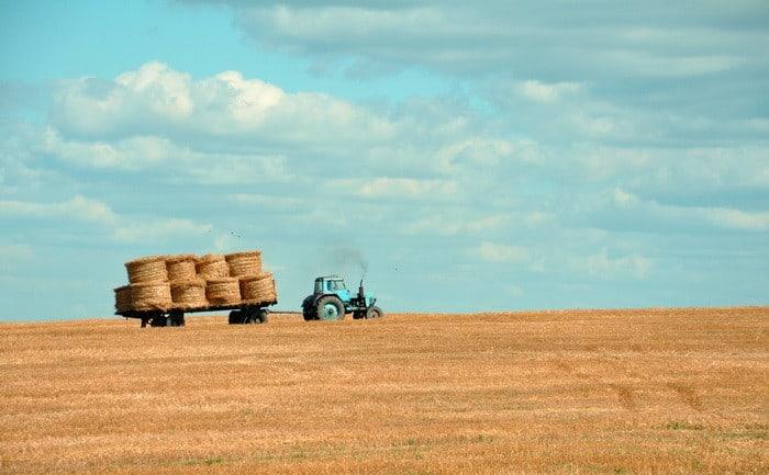 Ha szívesen foglalkoznál mezőgazdasággal és állattenyésztéssel, akkor válaszd az Aranykalászos gazda tanfolyamot!