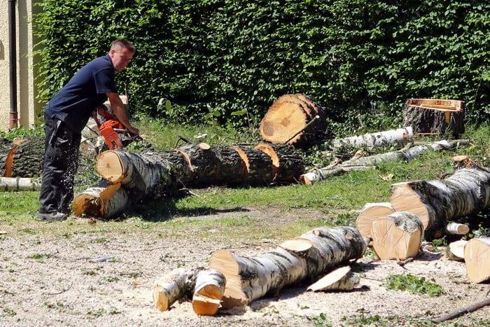 Ha szívesen végeznél fontos munkát, akkor a Lakott-területi fakitermelő OKJ-s tanfolyam Neked való!